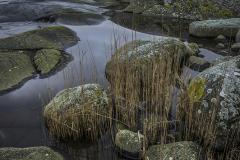 UT1501_16_Nicke_Svensson