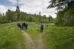 UT1506_13_Nicke_Svensson